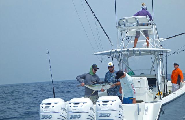 yellowfin fishing