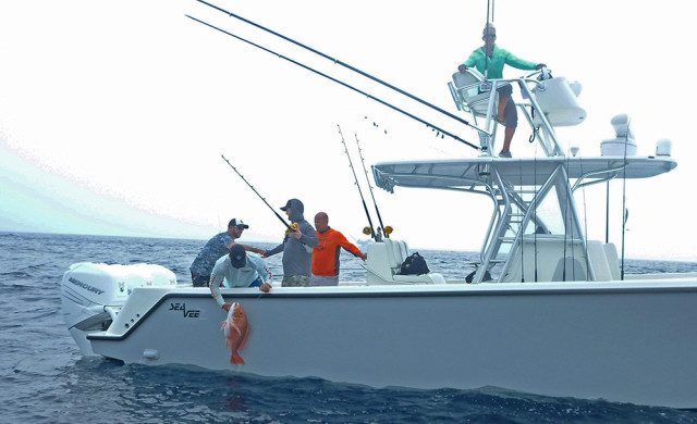rig fishing - Atlantic Red Snapper