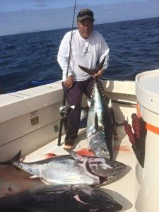SoCal bluefin