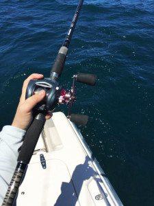 okuma gear - Okuma SCT Rods