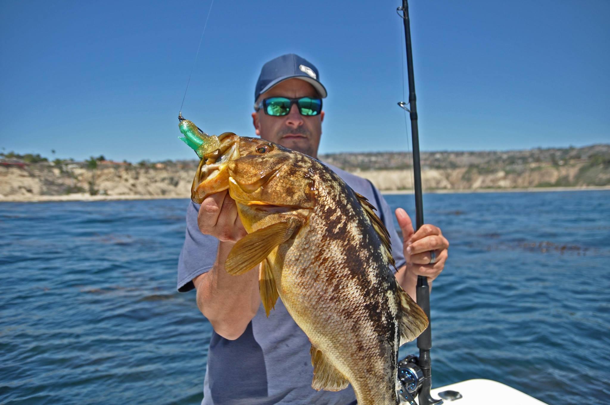 Fishing weedless swimbaits for calico bass bd outdoors for Calico bass fishing