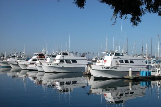 sportfishing fleet