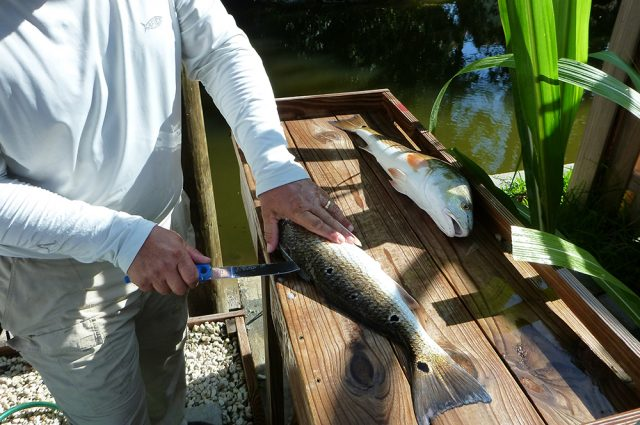 cuda knife - Five Great Fishing Tools