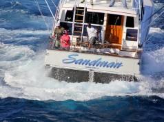 sailfish tournaments
