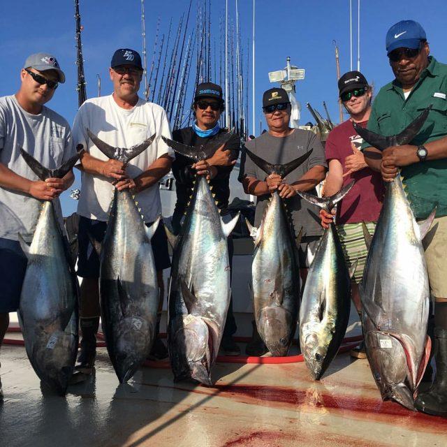 Bluefin Bite fishing