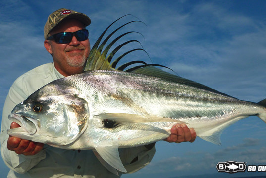 roosterfish costa-rica