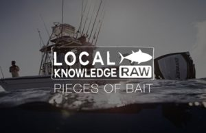 Local Knowledge bait