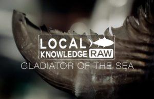 Fishing reports deep sea fishing hunting fishing for Local knowledge fishing
