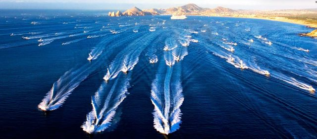 bisbee tournaments - 2016 Los Cabos Offshore