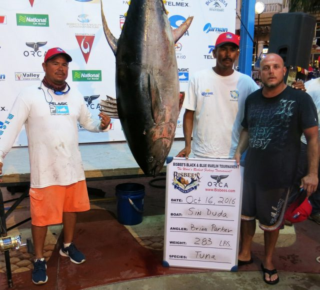 fishing tournament - 2016 Los Cabos Offshore