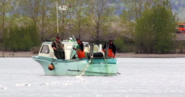 Defend Your Fishery - Oregon Anglers