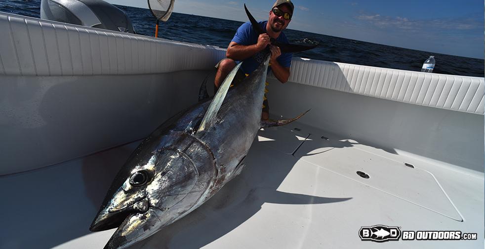 brandon-tuna