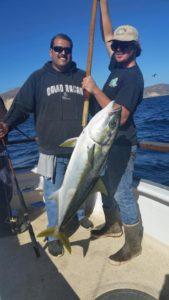 yellowtail continues to be Santa Cruz Island