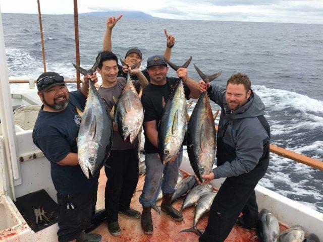 Yellowfin Bite