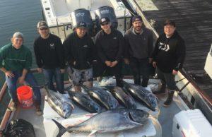 bluefin december