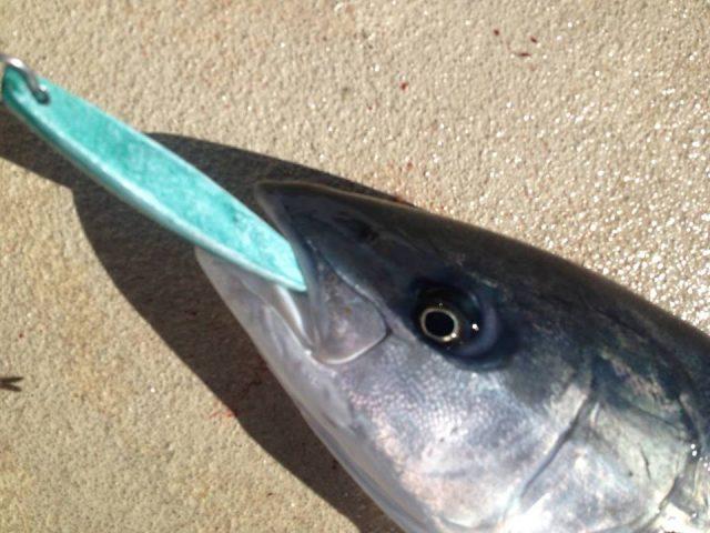 pacific queen fishing