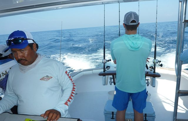 sailfish fishing