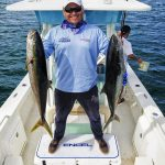 local yellowtail action