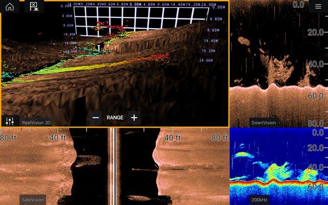 raymarine sonar