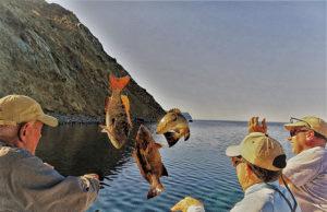 Fishing release photo