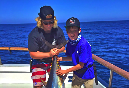 bluefin report