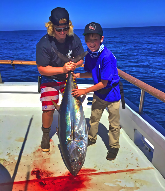 bluefin report tuna caught