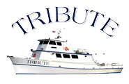 Tribute sportfishing