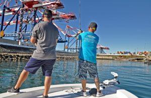 Bite Lures for fishing SeaBass