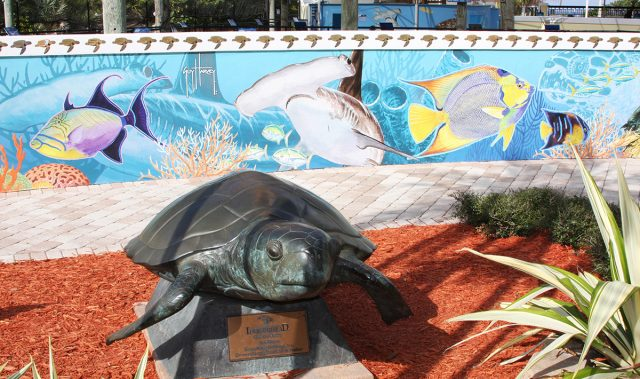 Loggerhead Marinelife Center for sea life