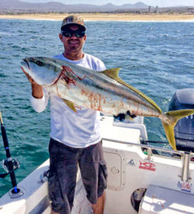 24-foot panga Pichurro with a 35-pound yellowtail landed