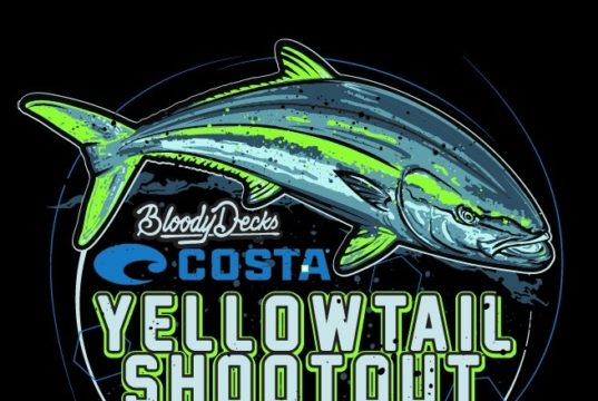 yellowtail shootout