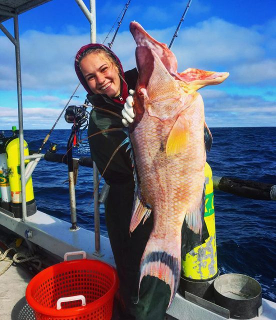 big hogfish caught by girl