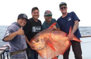 Pacific Queen Opah fishing