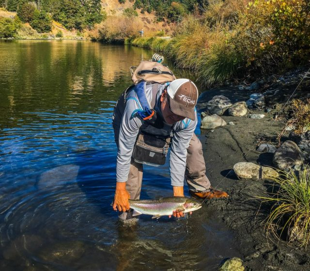 trout id fishing California Q&A - CDFW Answers Questions
