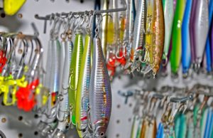 harbor bass Baits