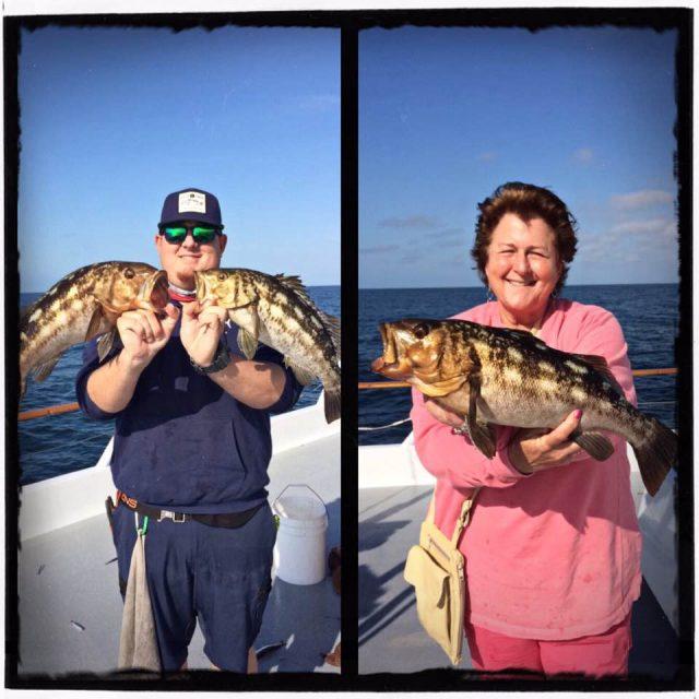 seabass caught