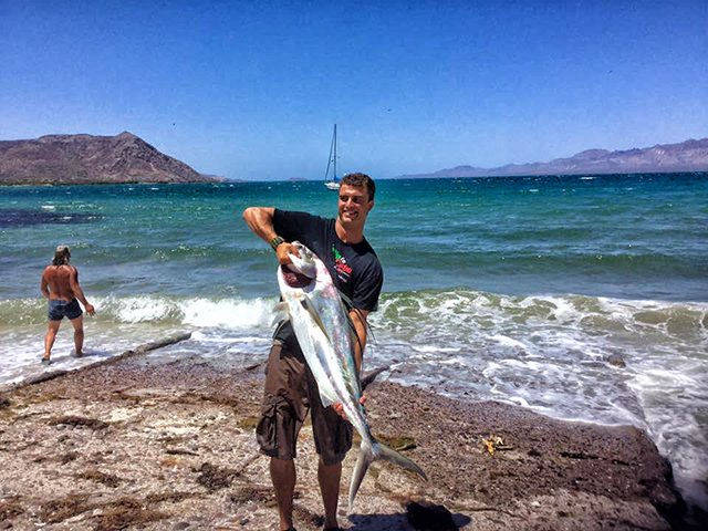 baja fishing report roosterfish