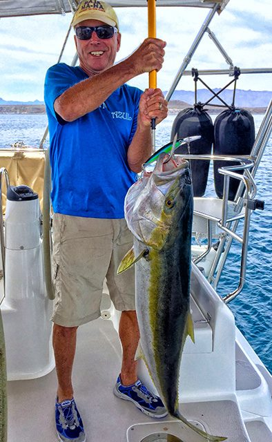 mexico fishing report yellowtail
