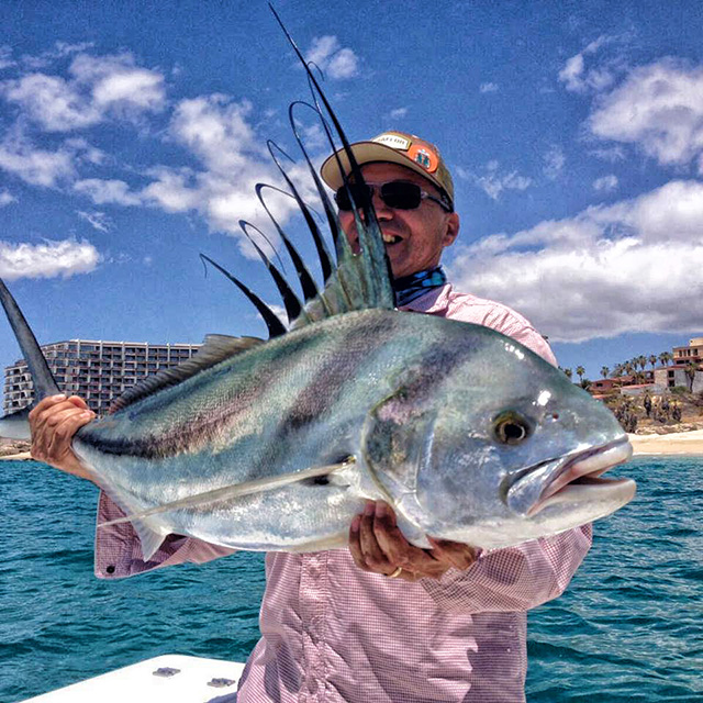 baja fishing report jacks