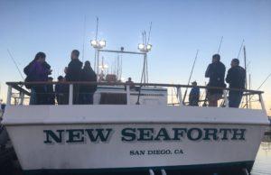 new seaforth to catch fish