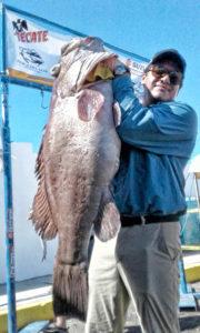 Pesca La Baja SEPESCABC