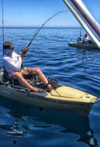 Kayak action aboard Hobie kayaks available