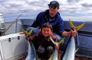 baja bytes Yellowtail Fish
