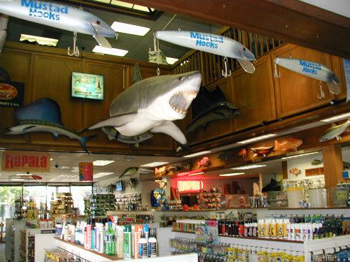 shimano longfin free shop - Shimano tour longfin