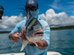 Roosterfish Crocodile Bay Costa Rica fishing report