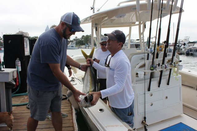 Yellowtail Shootout fishing Tournament