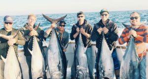bluefin caught