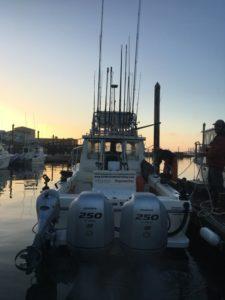 albacore sighting Boat