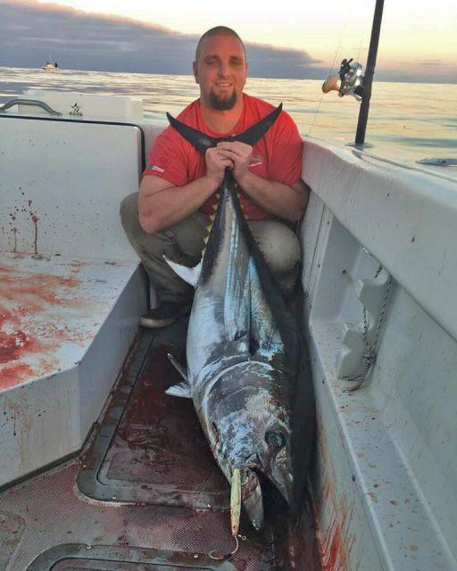 bluefin jig