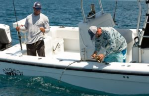 Bdoutdoors daily fishing reports news and discussion for Local knowledge fishing